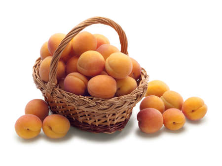 wattled: wattled basket filled with apricots is isolated on white