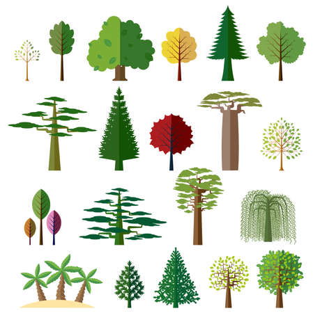 Various types of deciduous and evergreen trees. Set of flat vector icons