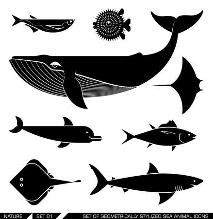 Set of various sea animal icons: whale, tuna, dolphin, shark, fish, rajiforme. Vector illustration. Çizim