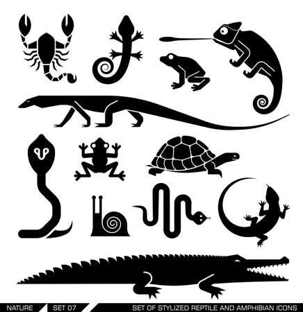 chameleon: Set of various animal icons