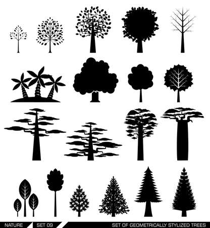 evergreen trees: Various types of deciduous and evergreen trees. Set of flat vector icons.