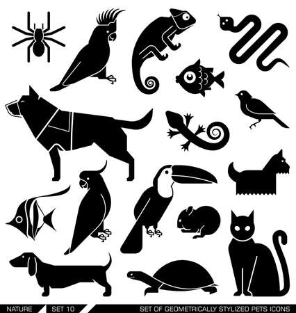 Set of various pet icons. Dog, cat, hamster, parrot, canary, spider, lizard, chameleon, tortoise, snake, aquarium fish.Suitable for various purposes, can be incorporated in logo due to their geometrical style.