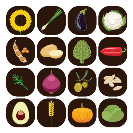 organic peppers sign: Vegetarian food icons. Collection of flat design icons presenting different types of vegetables isolated on brown background. Vector illustration. Illustration