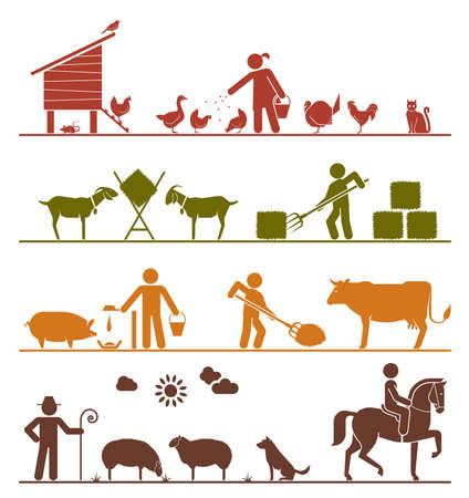pecora: Alimentazione polli e pollame, alimentando le capre di fieno, alimentazione suini e bovini, pecore al pascolo, equitazione. Icone di agricoltura. Vettoriali