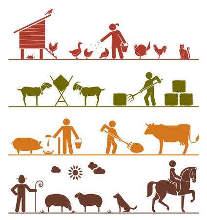 sheep sign: Feeding chickens and poultry, feeding goats with hay, feeding pigs and cattle, grazing sheep, riding horse. Agriculture icons.