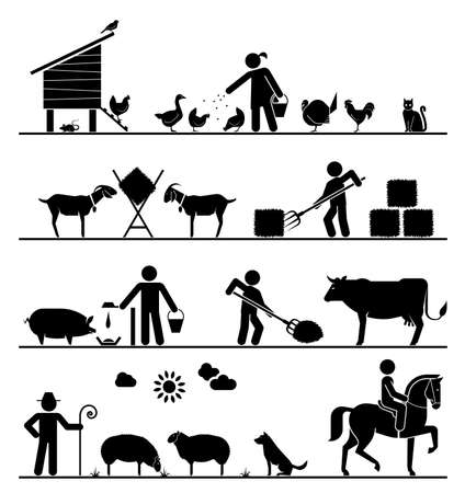 husbandry: Feeding chickens and poultry, feeding goats with hay, feeding pigs and cattle, grazing sheep, riding horse. Agriculture icons.