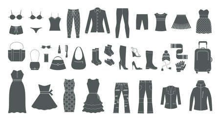 Set of women's clothing and accessories. Fashion and style elements.