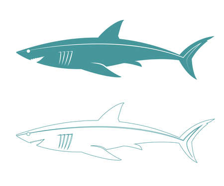 carcharodon: Stylized illustration of a large white shark with open mouth. Illustration