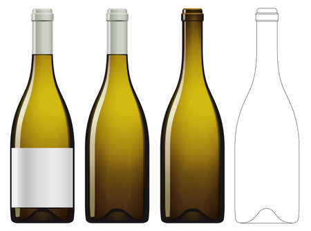 Realistic vector illustration of white wine bottle Isolated on white background. Front view of the wine bottle with label, bottle without label and linear technical drawimg of the wine bottle. Illustration