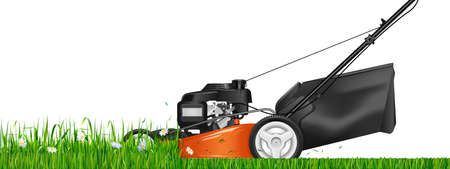 Lawn mower. Mowed grass. Lawn mower cutting green grass. Vector illustration.