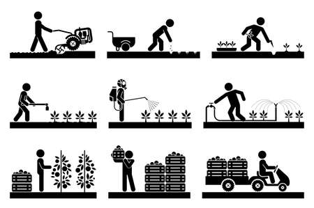 Food production. Pictogram icon set presenting different stages in agricultural process and gardening. Icon set presenting gardening, plowing, sowing, watering, picking, palletisation and warehousing, transporting.