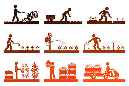 Food production. Pictogram icon set presenting different stages in agricultural process and gardening. Icon set presenting gardening, plowing, sowing, watering, picking, palletisation and warehousing, transporting. Illustration