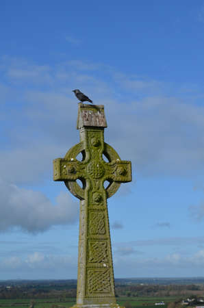 irish countryside: Stone celtic cross with a bird sitting on the top in Ireland.