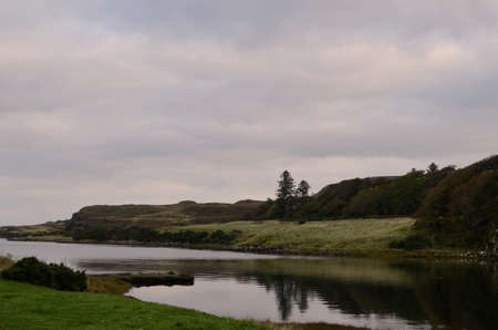Trees reflecting in the loch at Dunvegan.