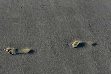 Beautiful foot prints on the coast of cape cod Foto de archivo