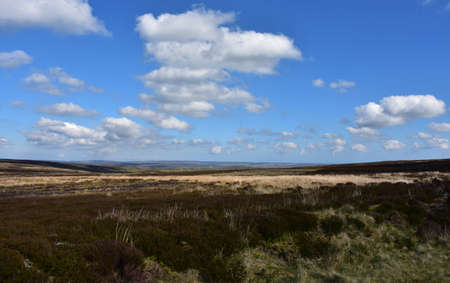 Picture perfect spring day in the North Yorkshire moors.