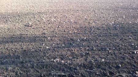 plowed field: plowed field