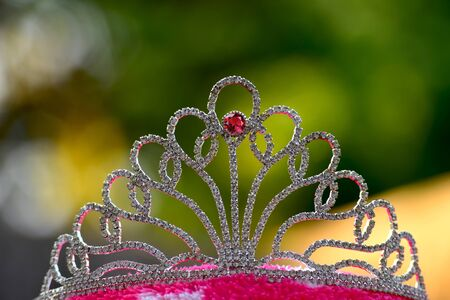 crown Set with ruby Surrounded by diamonds On a natural background