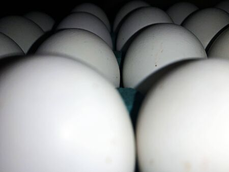close up view of Chicken white eggs in carton box