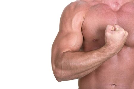 bodybuilder torso on white background photo
