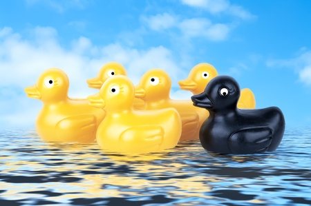 Rubber Duckies floating on water with blue sky photo