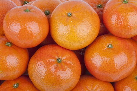 clementines - a variety of mandarin orange  Stock Photo - 15149709
