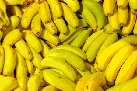 Rows of ripe yellow bananas in Madeira market photo