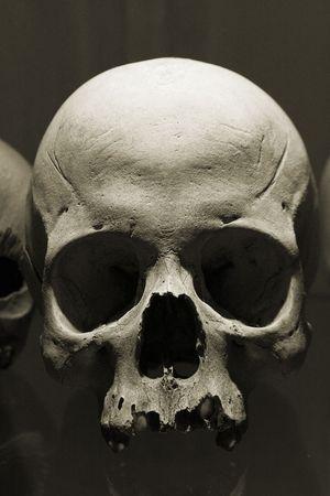 Skull in Kutna Hora ossuary, Czech Republic. Imagens