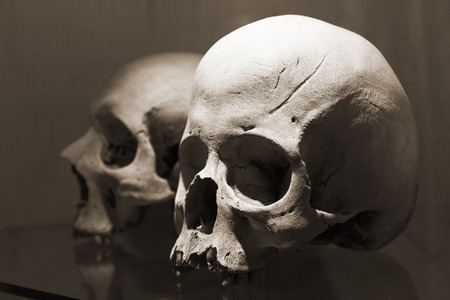 Skulls in Kutna Hora ossuary, Czech Republic. The inner decoration in this church is made of human bones. Stock Photo
