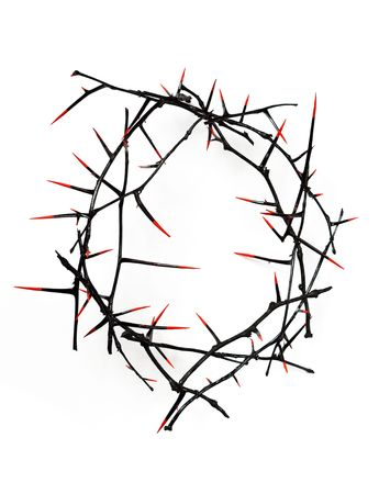 thorns  sharp: Crown of thorns - black with blood-red thorn points, isolated on white.