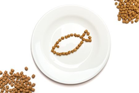 Professional dry cat food with tuna forming a fish on a white plate and heaps of food in the corners. photo