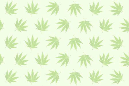 Pastel background formed with hemp (marijuana) leaves. photo