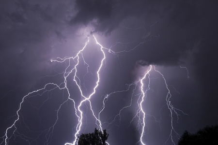 Close lightning over the trees, very bright bolts. Stock Photo