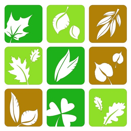 miscellaneous: Miscellaneous green and brown summer leaves silhouettes icons in a table.