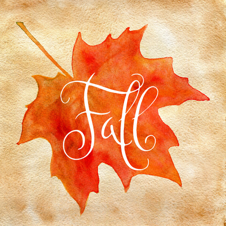 falls: Orange watercolor autumn maple leaf and handwritten word Fall over vintage brown paper.