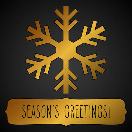seasons greetings: Golden snowflake and a frame with hand written seasons greetings over black. Vettoriali