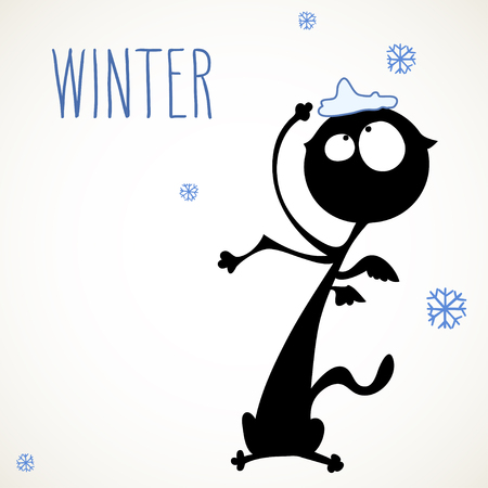 room for your text: Funny black cat surprised by snowflakes falling, room for your text.