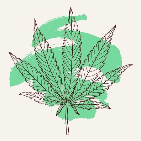 Marijuana leaf. Hand drawn narcotic cannabis design element with a green brush stroke. Hemp vector illustration isolated over white background.