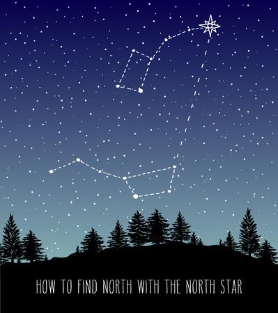 Trouver l'étoile du Nord Polaris. Skyline de la forêt de nuit avec les constellations Ursa Major et Ursa Minor (Little Dipper et Big Dipper). Espace et illustration vectorielle de conception astronomique. Vecteurs
