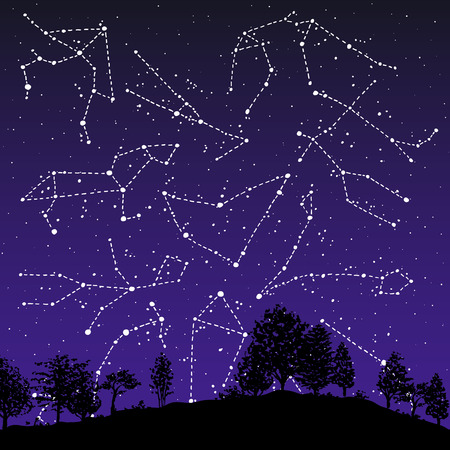 Hand drawn Zodiac signs constellations set over the night sky. Vector graphics astrology illustration. Western horoscope mystic symbols collection. Çizim