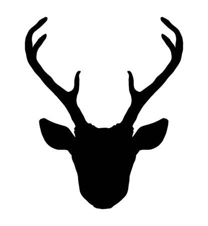 Hermosa silueta de cabeza de ciervo de estilo tribal dibujado a mano. Ilustración de vector vintage mágico en blanco y negro. Arte espiritual, yoga, estilo boho, naturaleza y naturaleza. Ilustración de vector