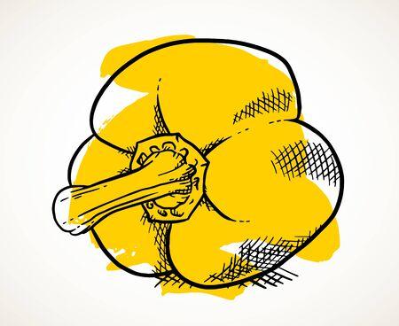 Fresh yellow sweet pepper. Vegetable design element for farm market, vegetarian food recipe. Creative vector illustration with brushstrokes isolated over white.