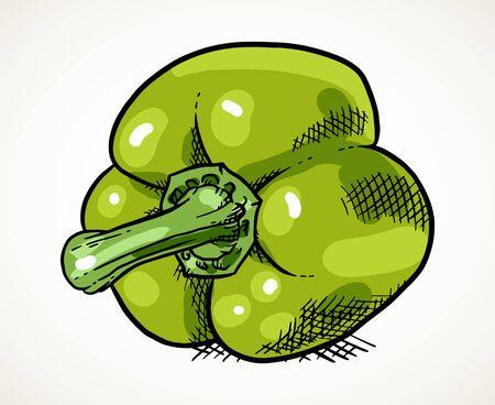 Fresh green sweet pepper. Vegetable design element for farm market, vegetarian food recipe. Creative vector illustration isolated over white.