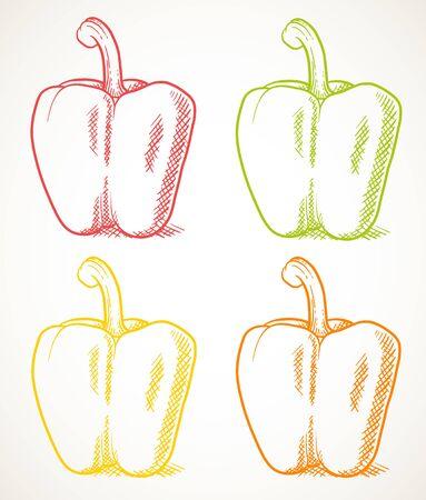 Fresh sweet peppers. Vegetable design element for farm market, vegetarian food recipe. Vector contour illustration isolated over white.