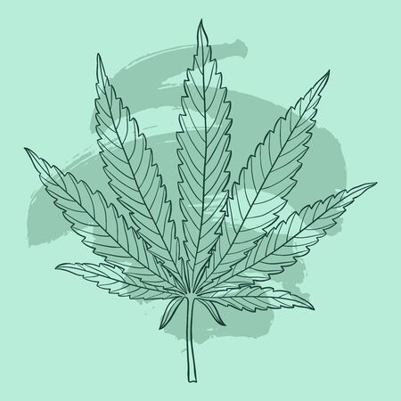Marijuana leaf. Hand drawn narcotic cannabis design element. Green hemp vector illustration with brush stroke.