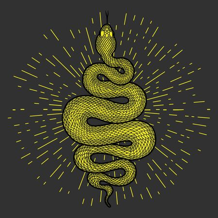 Coiled green snake with rays of light detailed illustration. Tribal serpent isolated over dark gray background. Vector design. Illustration