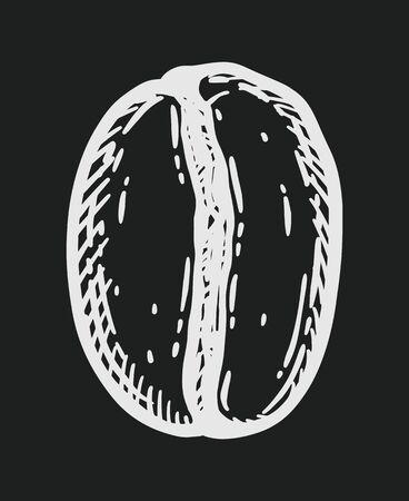 Roasted coffee bean, caffeine symbol. Hand drawn graphic engraving vector illustration in white isolated over black background.