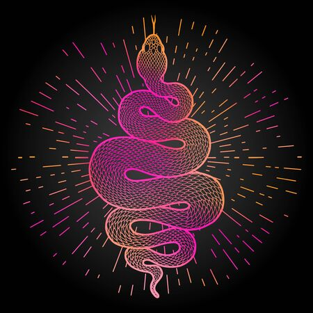 Coiled snake with rays of light illustration. Colorful tribal serpent isolated over black background. Vector design.