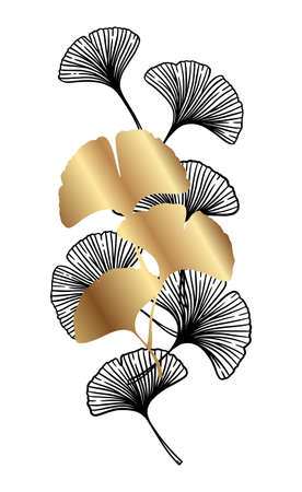 Ginkgo or Gingko Biloba black and golden leaves. Nature botanical gold vector illustration, decorative metal graphic isolated over white.