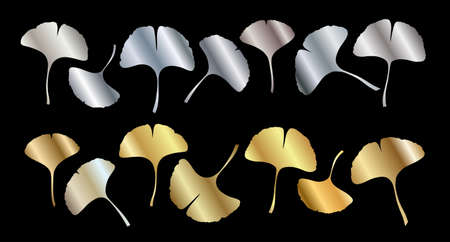 Ginkgo or Gingko Biloba golden and silver leaves set. Nature botanical gold and steel vector illustration, decorative metal graphic isolated over black.